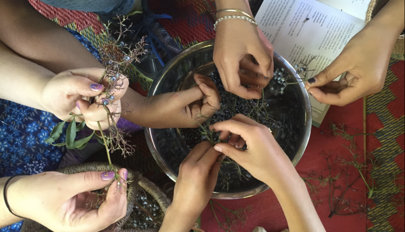 Photo of hands making elderberry syrup