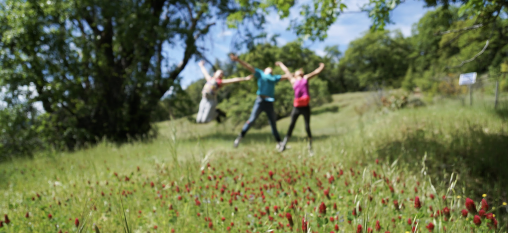 photo of three youth jumping up in a field of flowers